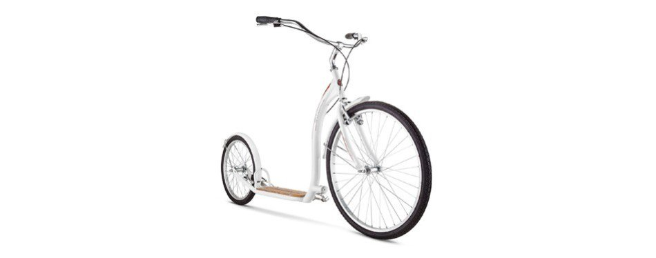 The Best Adult Scooter In 2019