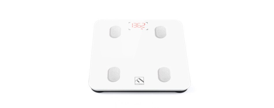 The Best Body Weight Scale In 2019