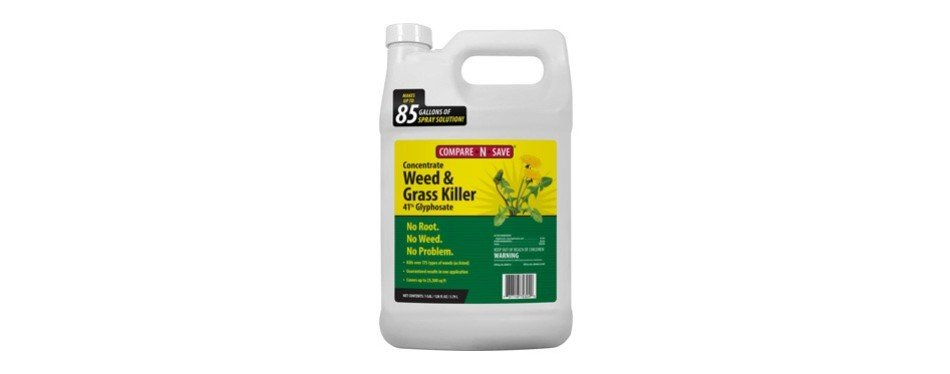 The Best Weed Killer In 2019