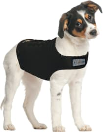 The 8 Best Dog Anxiety Jackets 2020