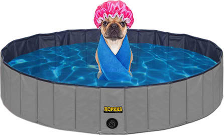 The 8 Best Dog Pools 2020