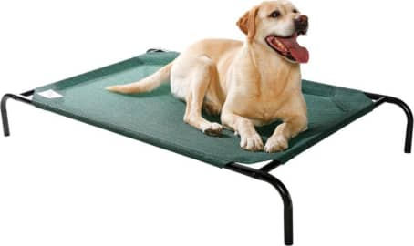 The 10 Best Raised Dog Beds 2020