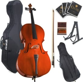 The 9 Best Cellos 2020