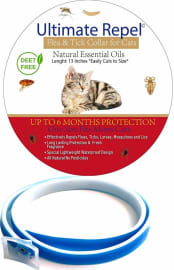 The 5 Best Flea Collars For Cats 2020