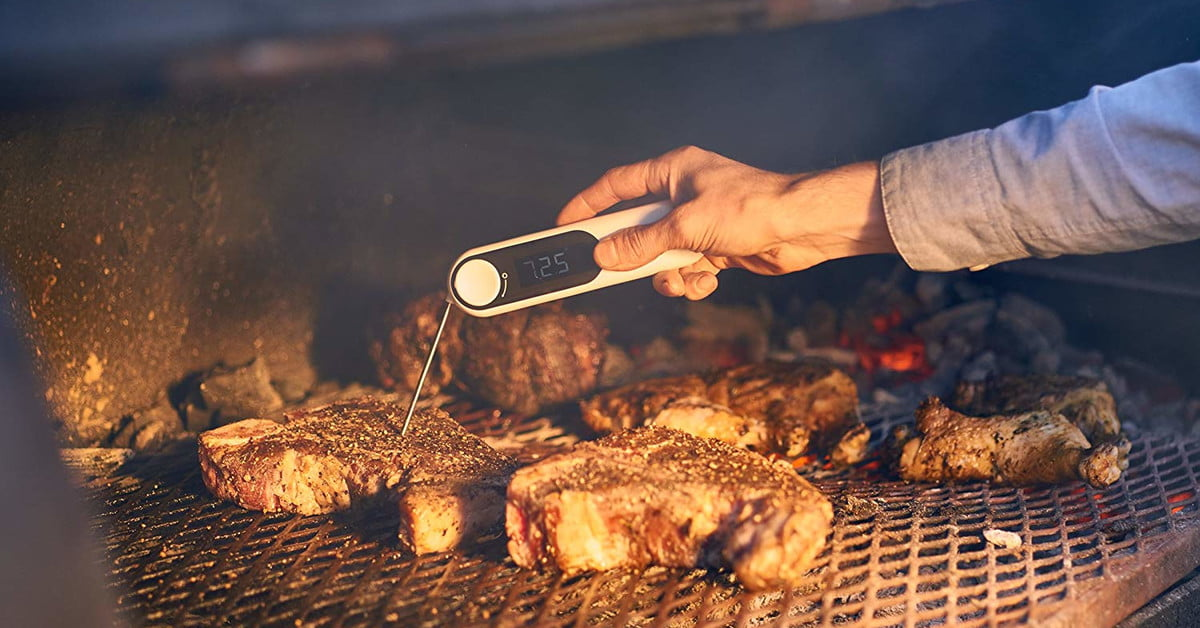 Best Meat Thermometers for 2020