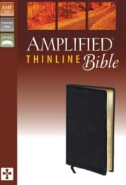 The 10 Best Amplified Bibles 2020