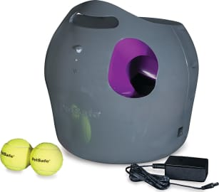 The 7 Best Automatic Ball Launchers For Dogs 2020