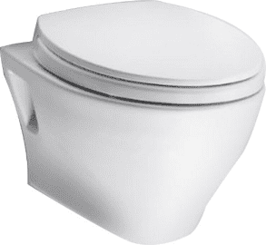 The 10 Best Toilets 2020