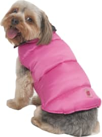 The 10 Best Dog Sweaters 2020