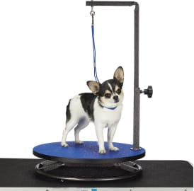 The 9 Best Dog Grooming Tables 2020