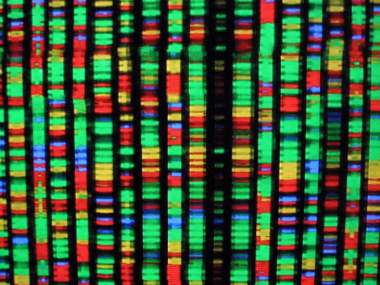 The Best DNA Testing Kits for 2020