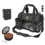 Top 10 Best Carrier For Small Dogs 2020