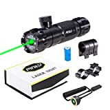 Top 10 Best Guns With Laser Pointers 2020