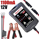 Top 10 Best Maintenance Battery Chargers 2020