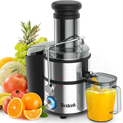 Top 10 Best Vegetable Juicers 2020