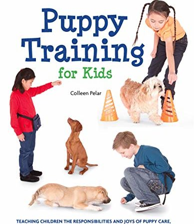 Top 10 Best of Puppies For Kids 2021