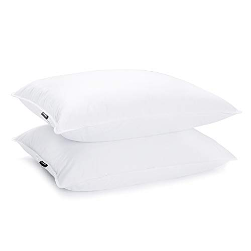 Top 10 Best of Duck King Sized Pillows 2021