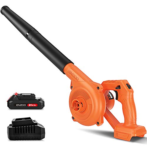 Top 10 Best Leaf Blower And Vacuums 2021