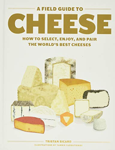 Top 10 Best Cheeses 2021
