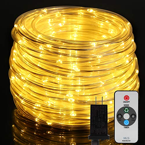 Top 10 Best Holiday Time Rope Lights 2021
