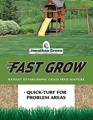 Top 10 Best Grass Seeds 2021