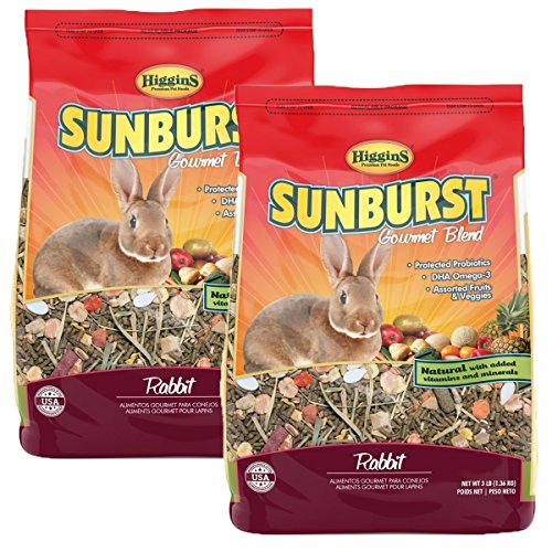 Top 10 Best Food For Rabbits 2021