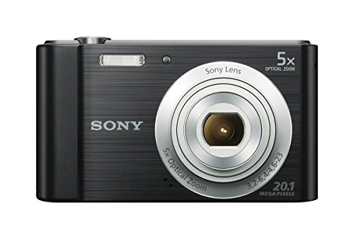 Top 10 Best Point And Shoot Digital Cameras 2021