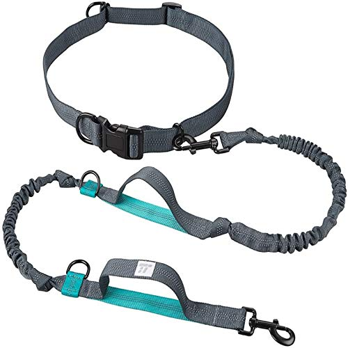 Top 10 Best Blovess Dog Leashes 2021