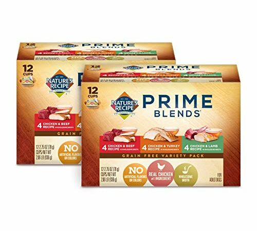 Top 10 Best Nature's Variety Dog Foods 2021